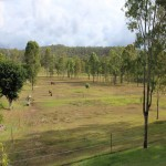 Ten acres in the beautiful Lockyer Valley - 4 bed mod home thumb