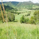 170 Acre cattle property situated in beautiful Cedar Pocket. thumb